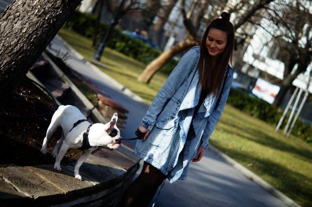 doglar2